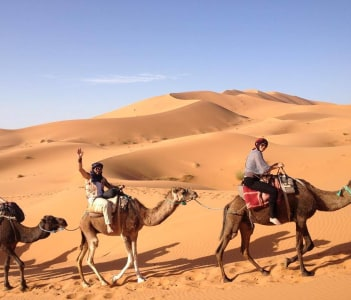 tour by camels in desert