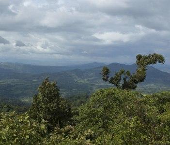Esteli Hills