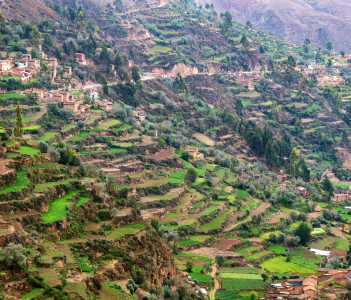 Lush green farming terraces in Tarma, Peru