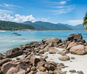Perfect One Palm Tree Beach Ilha Grande Island. Tropical Paradise Rio do Janeiro. Brazil. South America Adventure.