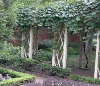 18th Century Garden