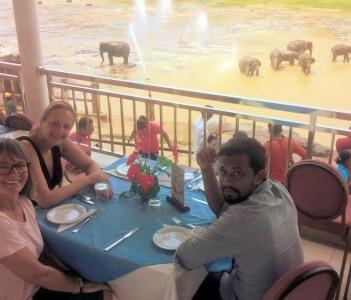 tea with a elephant bath