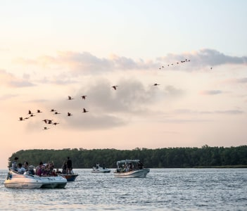 Tourists have a trip and bird watching scarlet ibis on the delta of Parnaiba River, Northern Brazil