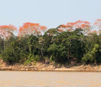 Rio Madre Dios River, Puerto Maldonado, Peruvian Amazon