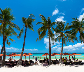 Horizontal view of coconut trees and tents in a beautiful sunny day at Boracay