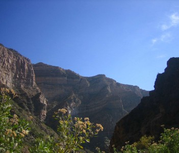 Canyon Goodness