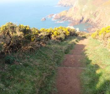 South coast cliffs