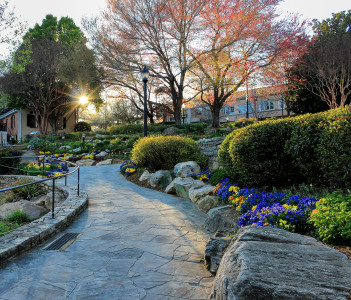 Greenville downtown Falls park at golden hour