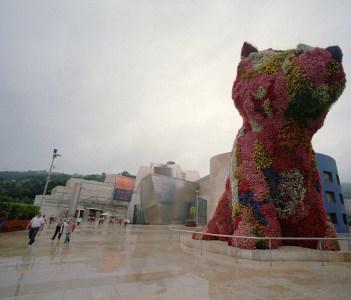 Giant Puppy near Guggenheims