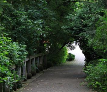 Botanic Garden Cluj