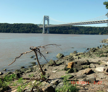 George Washington Bridge with my drift wood sculpture