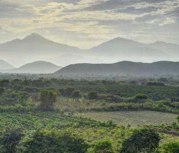 Peruvian oasis landscape in the foggy dawn in Casma Valley Peru