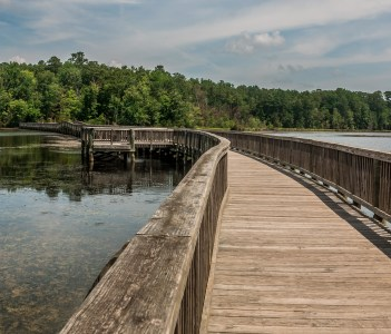 Side view of long bridge and forest in Newport News Park Virginia