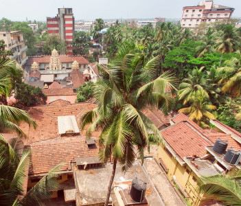 Citycape with Palms houses and tiled roofs, Mangalore, Karnataka