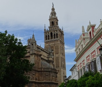 View of the Cathedral