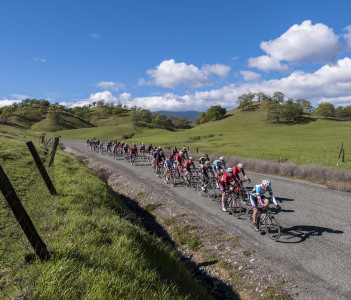 Category Peloton during the road race stage at the Chico Stage Race in Northern California