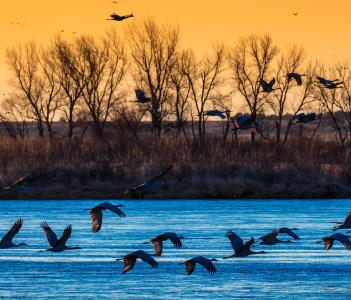 Grand Island Nebraska USA