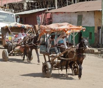 Local Ethiopian life in Debarq