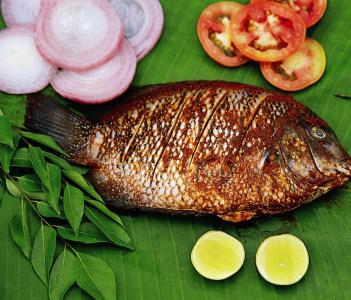 Pearlspot fish state fish of Kerala.