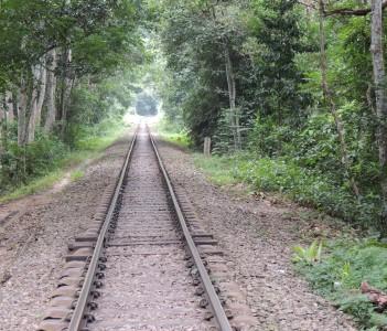 Rail treck through the rain forest