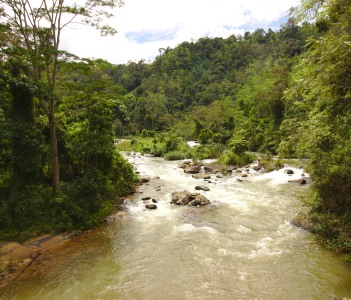 Beautiful River in Sinharaja Forest Reserve in Sri Lanka