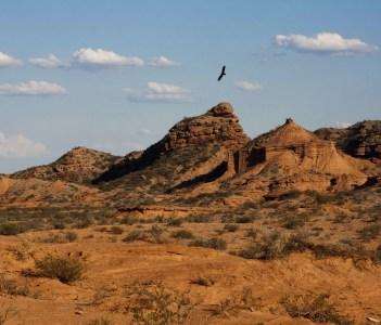 Paisaje con condor