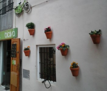 little bike on the wall