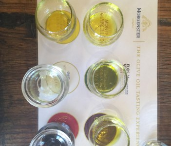 Olive Oil tasting at Morgenster