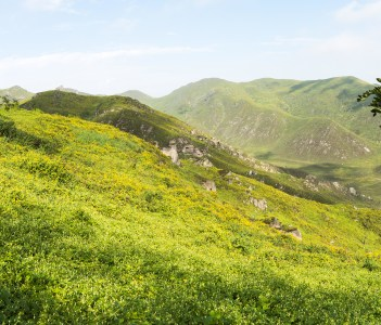 Lachay hills national park Huacho Lima Peru