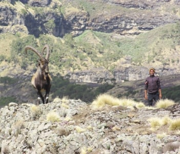 Photography in Simien