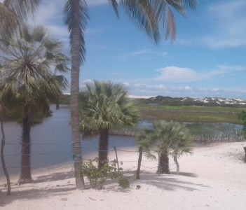 Baixa Grande: an unbelievable oasis in the middle of the dunes