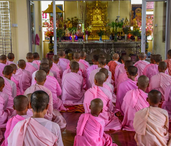 Nuns in Pink Robes chanting in Buddhist Temple in Dawei, Myanmar
