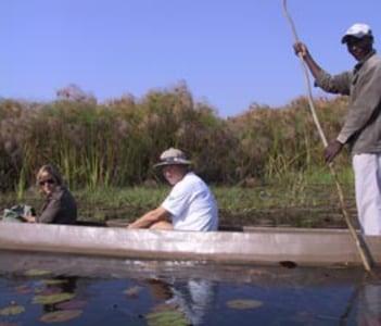 Canoeing in botswana swamps
