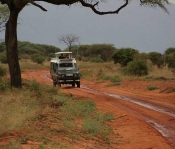 Voi Safari