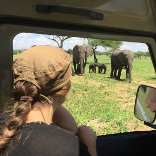 Top 10 Tips to Book an African Safari