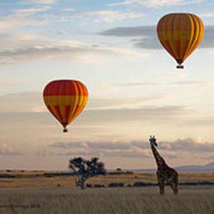 Kenya Hot Air Balloon Safaris - Hot Air Ballooning / Masai Mara Wildlife Safaris.