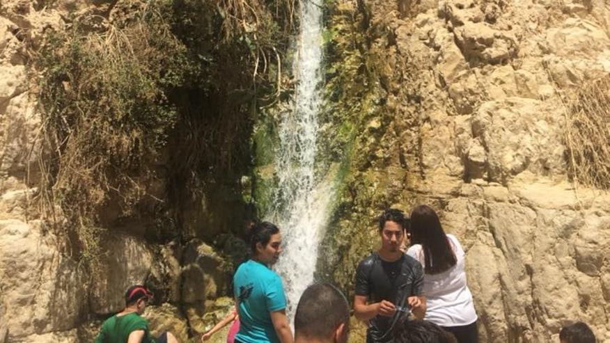 David waterfall