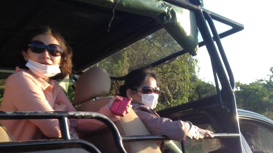 Wildlife Safari rides