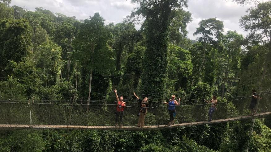 Overlooking Kakum Rainforest canopy