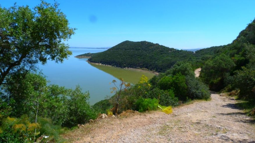 Do bird watching at the Ichkeul National Park in Tunisia