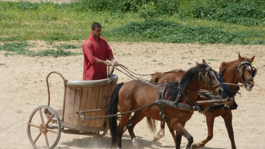 Chariot ride
