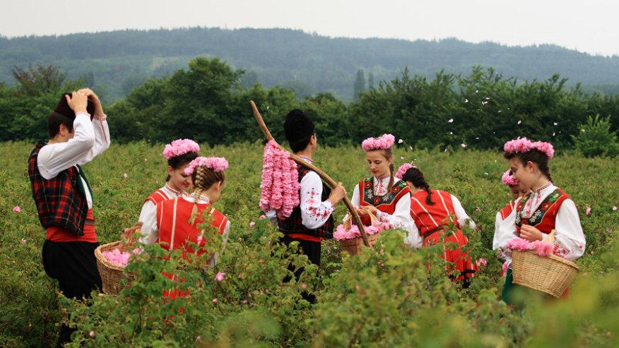 Annual Rose Festival