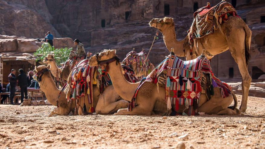 Petra Classic Tour