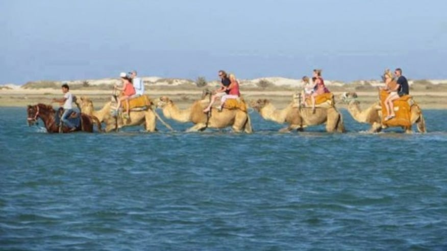 Set off on a tour in Jerba