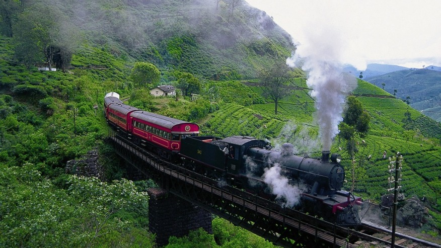 Train moving through tea plantations.