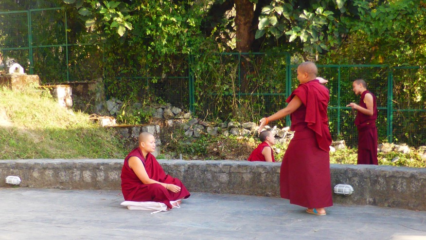 Meet monks at the Sherab Ling Monastery