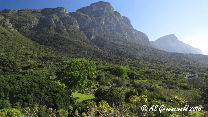 Kirstenbosch Botanical Garden - Botany Excursion