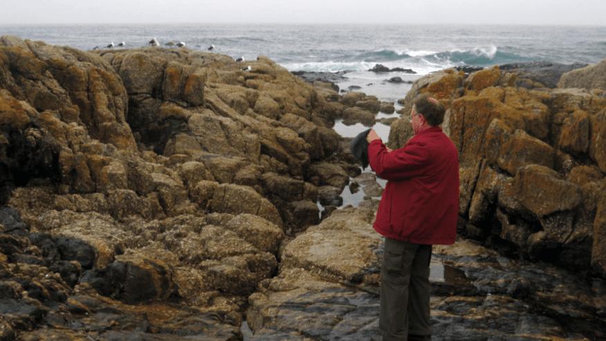 Granite-Migmatite