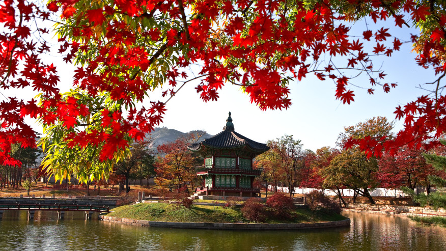 Why Seoul should be on your 2019 travel bucket list!