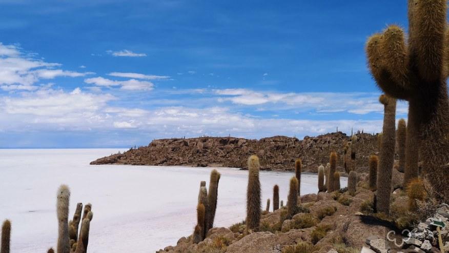 Inca Island